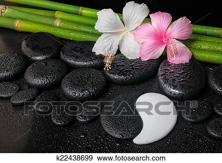 Stock Photograph Of Spa Setting Of White Pink Hibiscus Flowers