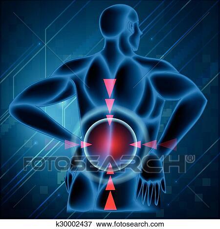 espina dorsal humana, actuaci�n, dolor de espalda, ilustraci�n