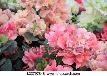 Pictures Of Pink And White Plastic Flowers K33797848 Search Stock