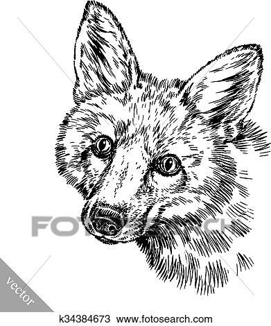 Clipart Graver Encre Dessiner Renard Illustration K34384673