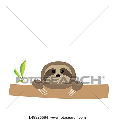 Sloth Face And Hands Cute Cartoon Character Tree Branch Wild Joungle Animal Collection Baby Education Isolated White Background Flat Design Clipart K49325584 Fotosearch