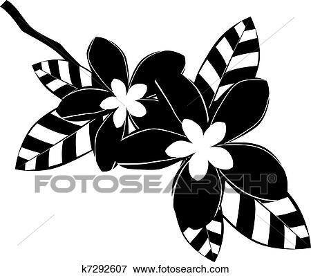 Clip Art - schwarz weiß, plumeria, blumen k7292607 - Suche Clipart ...