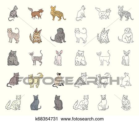 Breeds Of Cats Cartoon Outline Icons In Set Collection For Design Pet Cat Vector Symbol Stock Web Illustration Clipart K68354731 Fotosearch