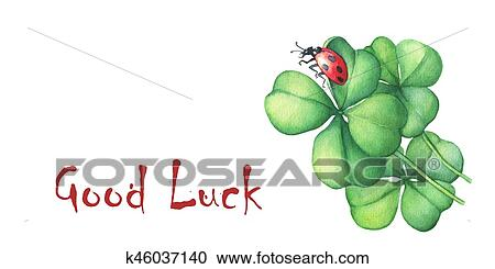Ladybug Sitting On A Green Four Leaf Clover Good Luck Hand Drawn Watercolor Painting White Background