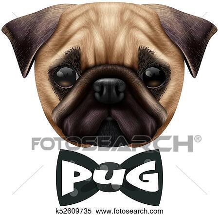 97cb351bbce9 Realistic Pug Dog Portrait Clipart | k52609735 | Fotosearch