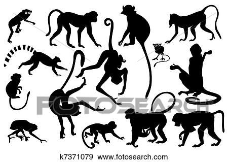Monkey Silhouettes Collection Stock Illustration K7371079