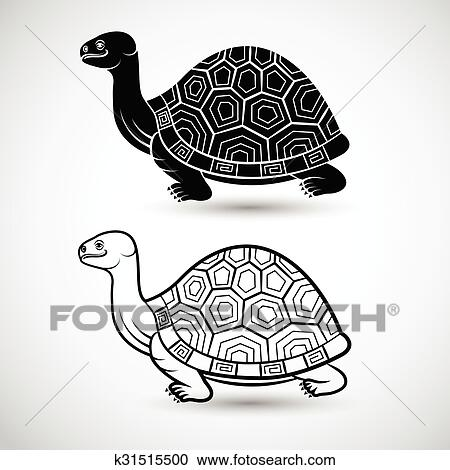 Chinese Turtle Art On White Background