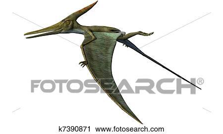 Pteranodon Dinosaur wings down Clip Art