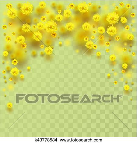 Clipart Of Yellow Fluffy Mimosa Flowers Fall Vector Illustration