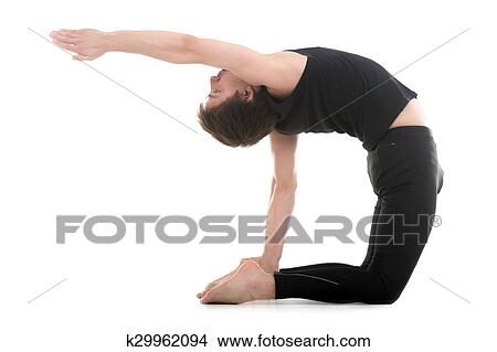 camel pose picture  k29962094  fotosearch