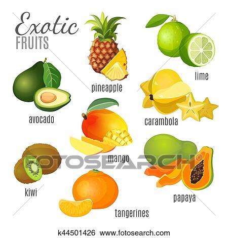 Clipart fruits exotiques avocat ananas papaye - Image fruit exotique ...