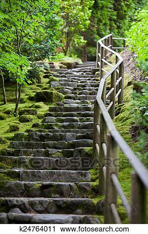 Rustique, pierre, escalier, portland, jardin japonais Banque d\'Image