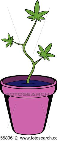 Clipart Usine Cannabis Dans A Pot Icone Dessin Anime