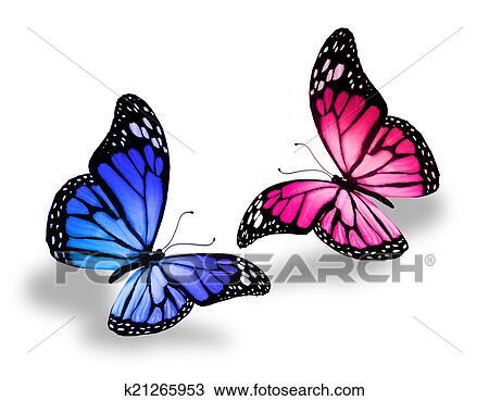 dessin rose bleu papillon fotosearch recherchez des cliparts des illustrations - Papillon Dessin