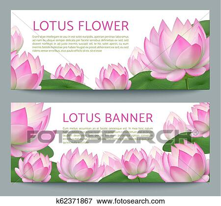 Pink Lotus Banners Realistic Pond Water Flower Ayurveda Treatment Healing Garden Vector Banner Set With Lotuses Clip Art