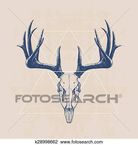 Clipart - venado, cráneo k28998662 - Buscar Clip Art, Ilustraciones ...