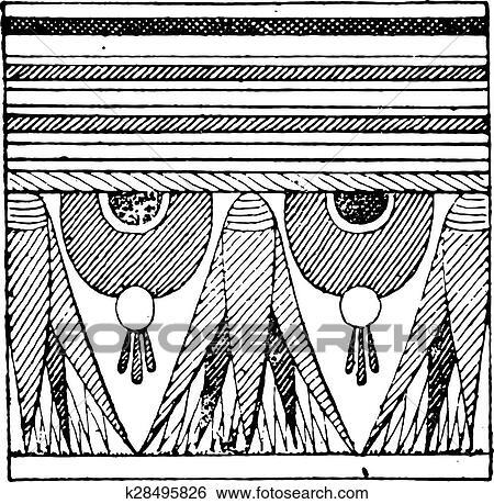 Egipcio Ornamento Delinear Um Sarcofago Vindima Engraving