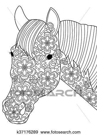 Clip Art Kopf Pferd Färbung Vektor Für Erwachsene K37176289