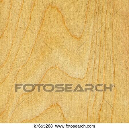 Bouleau Texture Bois Banque De Photo
