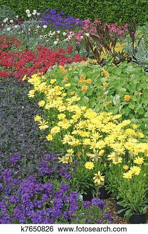 Banque d\'Images - jardin anglais, plate-bande, usines k7650826 ...