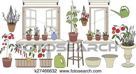 Vasi fiore con erbe e vegetables piante crescente for Finestra con fiori disegno