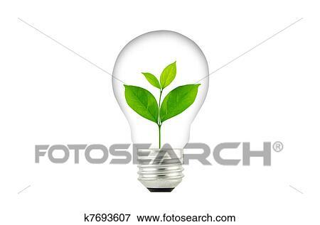 stock illustration gl hbirne mit pflanzenkeim innenseite pflanze k7693607 suche clipart. Black Bedroom Furniture Sets. Home Design Ideas