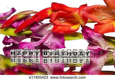 Joyeux Anniversaire à Rose Rouge Fleurs Banque Dimage