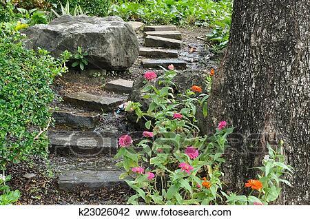 Naturel, pierre, escalier, landscaping, dans, jardin maison Banque d ...