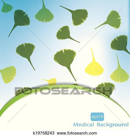 feuilles de ginkgo biloba