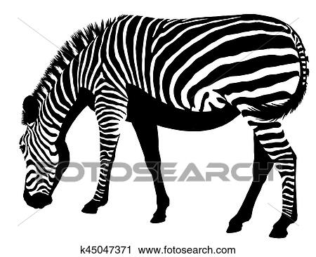 Clipart Of Black And White Linear Paint Draw Zebra Illustration