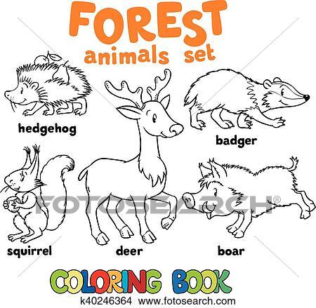 Clipart Wald Tiere Ausmalbilder K40246364 Suche Clip Art