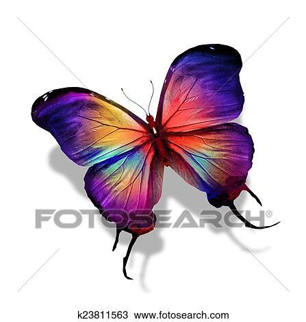 Dessin couleur papillon k23811563 recherchez des - Papillon dessin couleur ...