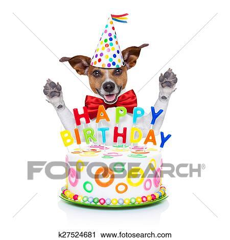 Stock Fotografie Gelukkige Verjaardag Hond K27524681 Zoek