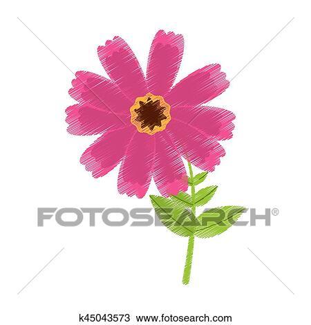 Dessin Rose Fleur Cosmos Printemps Icône Clipart