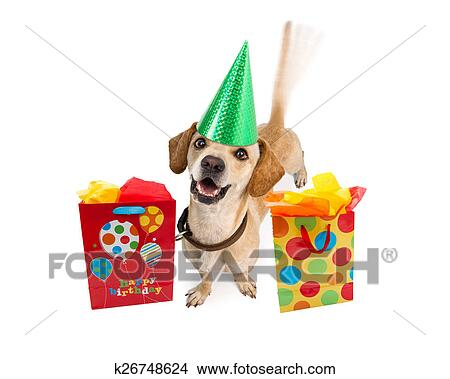 A Cute Young Puppy Dog Wearing Birthday Hat Next To Colorful Gift Bags Intentional Motion Blur From Wagging Tail Isolated On White