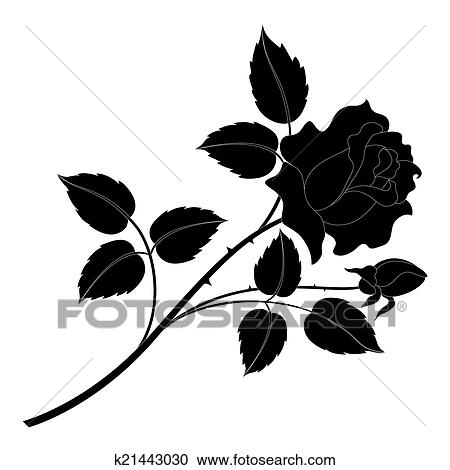 Banque D Illustrations Fleur Rose Noir Silhouette K21443030