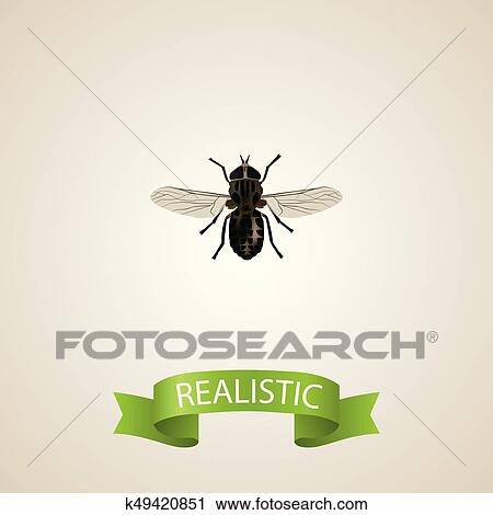 Realistic Fly Element  Vector Illustration Of Realistic Midge Isolated On  Clean Background  Can Be Used As Midge, Fly And Gnat Symbols  Clipart