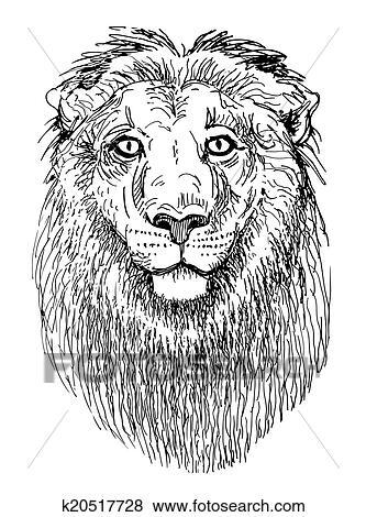 Typon Lion Croquis Noir Blanc Dessin De Tête Animaux Clipart