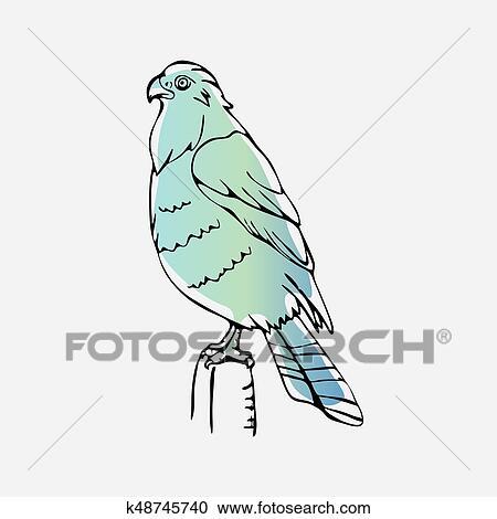 Clipart - hand-drawn, lápiz, gráficos, buitre, águila ...