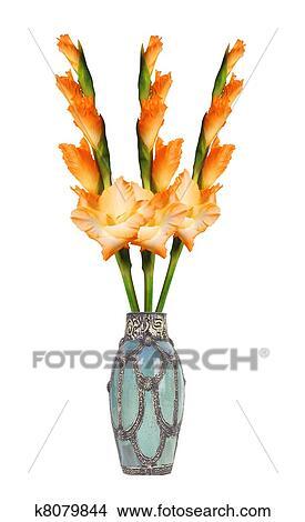 Stock Photo Of Beautiful Orange Gladiolus In Vase Isolated On White
