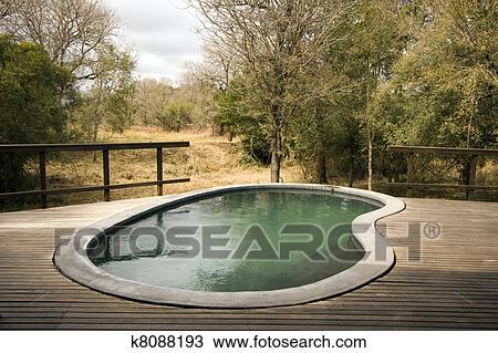 Beliebt Teich, auf, holzterrasse Stock Bild   k8088193   Fotosearch PA72