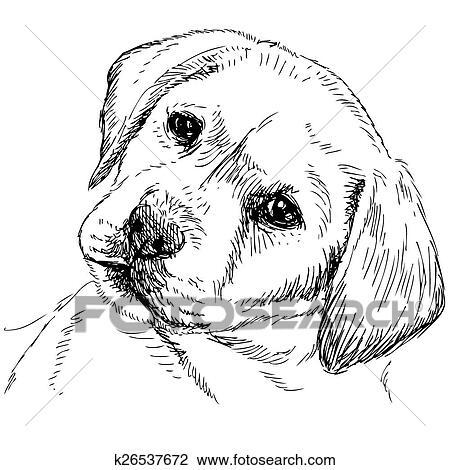 Clipart cane riporto labrador k26537672 cerca clipart - Cucciolo da colorare stampabili ...