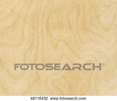 Bouleau Texture Bois Banque Dimage