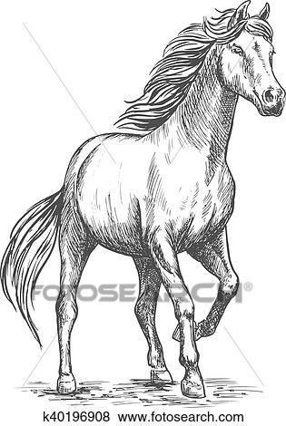 Clip art cavallo bianco con camminare passo pesante for Immagini cavalli da disegnare