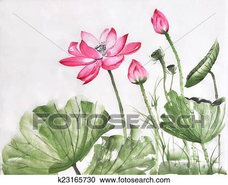 Lotus Flower Watercolor Painting Stock Image K23165730 Fotosearch