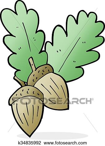 Klipart Rysunek żołędzie K34835992 Szukaj Cliparty Ilustracje