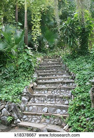 Naturel, pierre, escalier, landscaping, dans, jardin Banque de Photo ...