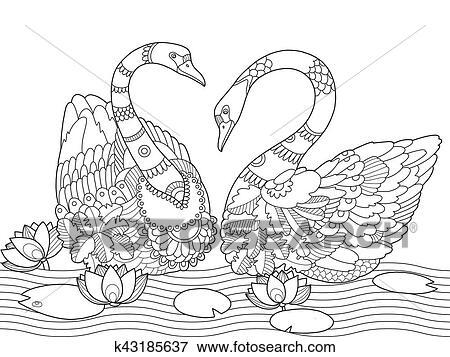 Clip Art - schwan, ausmalbilder, für, erwachsene, vektor k43185637 ...