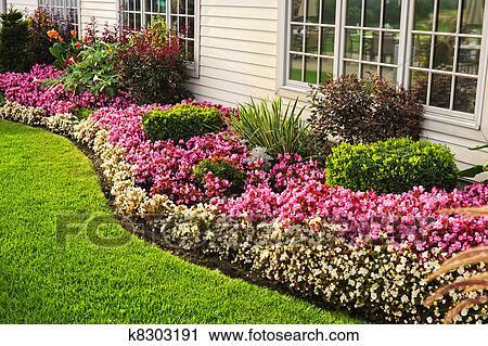 Coloré, jardin fleur Banque d\'Image
