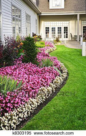 Coloré, jardin fleur Banques de Photographies
